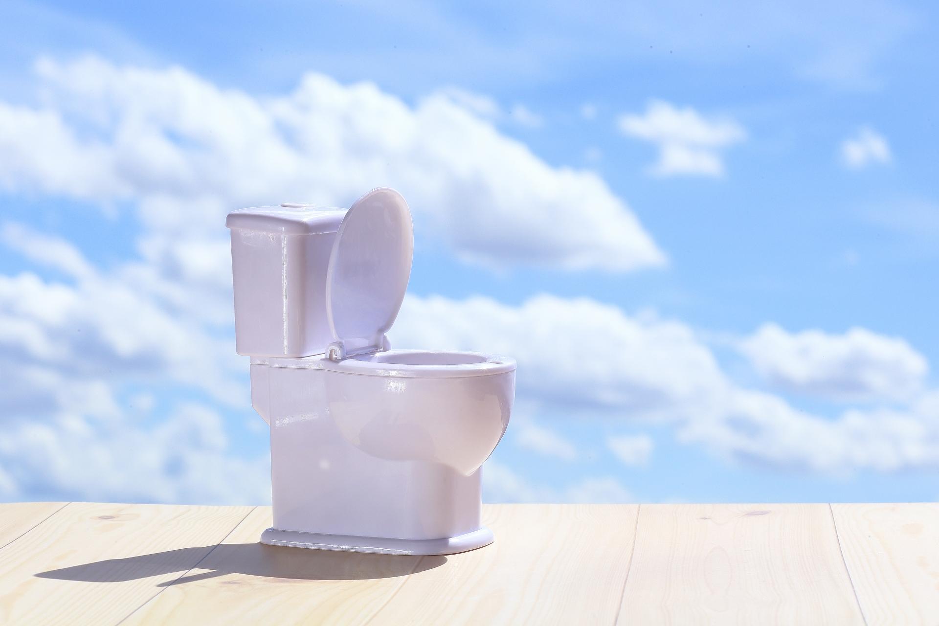 中 と トイレ を に 水 な 世界 安全