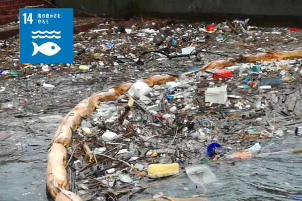 海洋プラスチックごみゼロへの挑戦!SDGsゴール14「海の豊かさを守ろう」<br>【 HAYAMI の草ストロー】